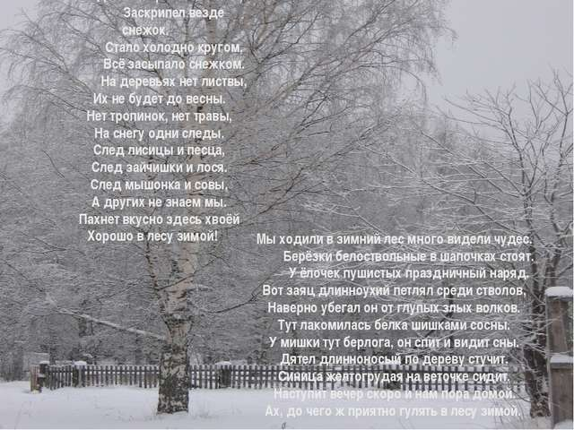 Когда зима пришла в лесок, Заскрипел везде снежок. Стало холодно кругом, В...