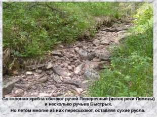 Со склонов хребта сбегают ручей Поперечный (исток реки Лемезы) и несколько ру