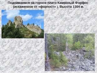 Поднимаемся на горное плато Каменный Форфос (искаженное от «форпост» ). Высот