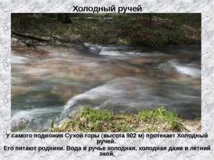 Холодный ручей У самого подножия Сухой горы (высота 902 м) протекает Холодный