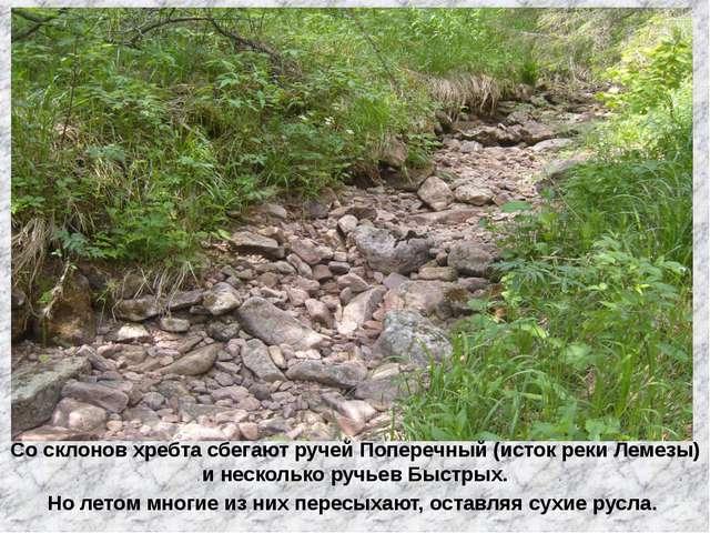 Со склонов хребта сбегают ручей Поперечный (исток реки Лемезы) и несколько ру...