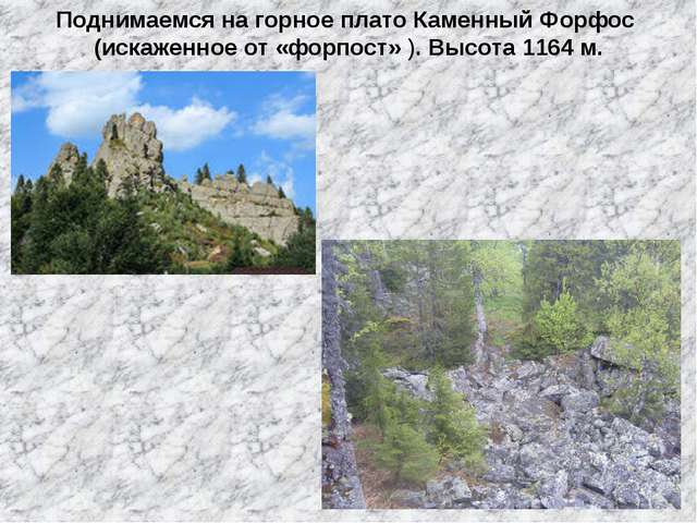 Поднимаемся на горное плато Каменный Форфос (искаженное от «форпост» ). Высот...