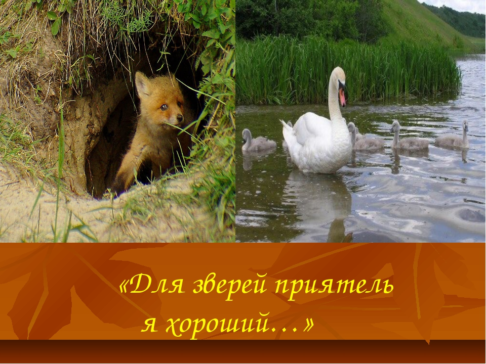 «Для зверей приятель я хороший…»