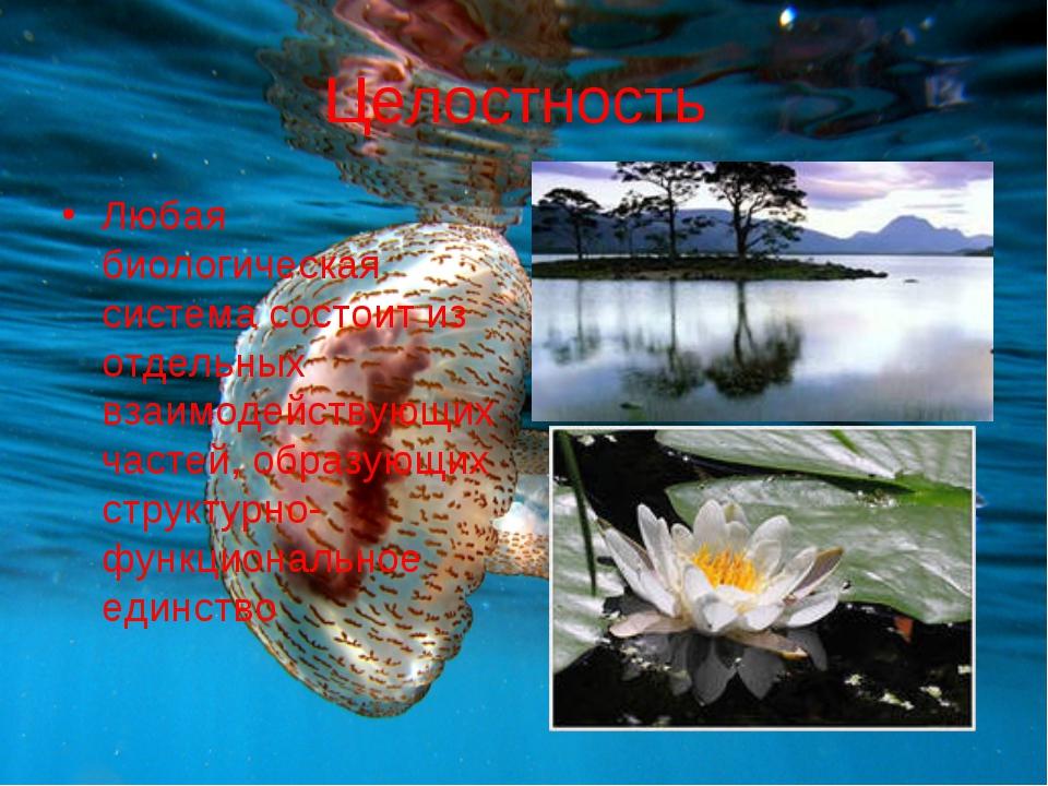 Целостность Любая биологическая система состоит из отдельных взаимодействующи...