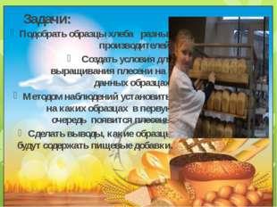 Задачи: Подобрать образцы хлеба разных производителей; Создать условия для вы
