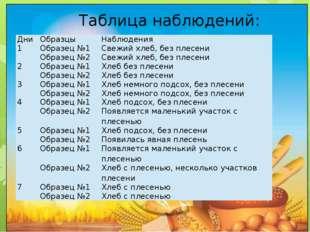 Таблица наблюдений: Дни Образцы Наблюдения 1 Образец №1 Свежий хлеб, без пле
