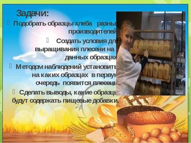 Задачи: Подобрать образцы хлеба разных производителей; Создать условия для вы...