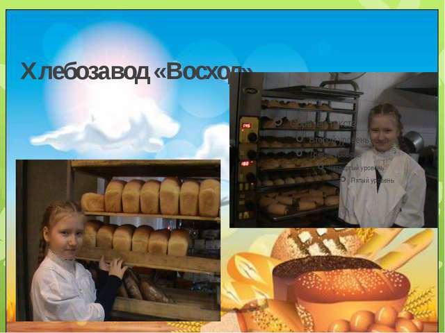 Хлебозавод «Восход»