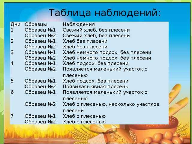 Таблица наблюдений: Дни Образцы Наблюдения 1 Образец №1 Свежий хлеб, без пле...
