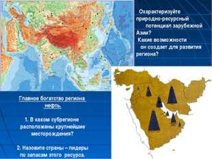 Охарактеризуйте природно-ресурсный потенциал зарубежной Азии? Какие возможно