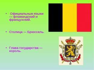 Официальные языки — фламандский и французский. Столица — Брюссель. Глава гос