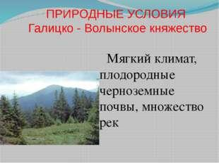 ПРИРОДНЫЕ УСЛОВИЯ Галицко - Волынское княжество Мягкий климат, плодородные че