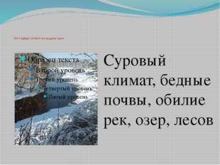 ПРИРОДНЫЕ УСЛОВИЯ Новгородская земля Суровый климат, бедные почвы, обилие ре