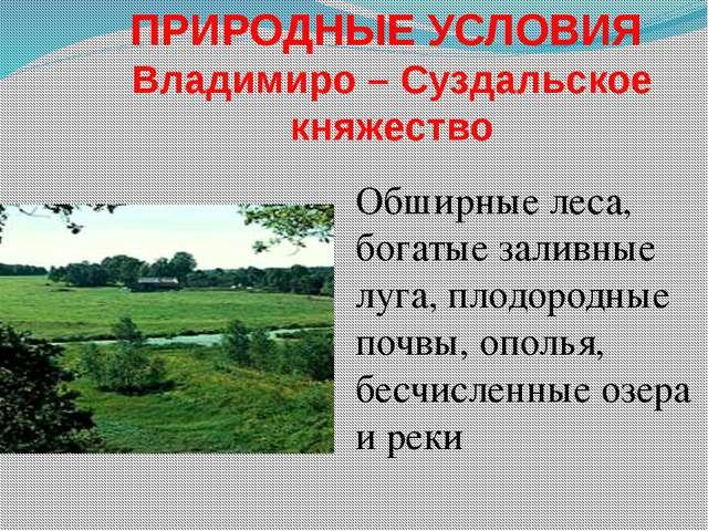 ПРИРОДНЫЕ УСЛОВИЯ Владимиро – Суздальское княжество Обширные леса, богатые за...