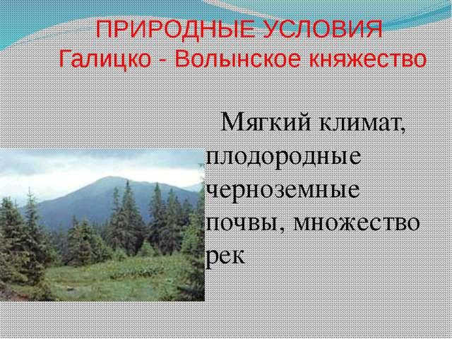 ПРИРОДНЫЕ УСЛОВИЯ Галицко - Волынское княжество Мягкий климат, плодородные че...