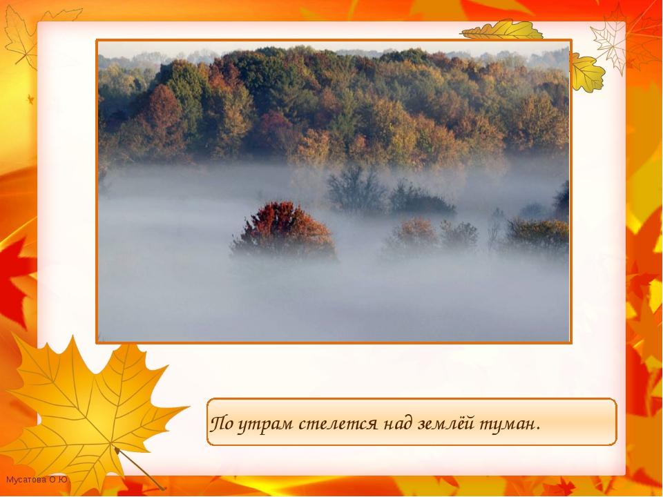 По утрам стелется над землёй туман. Мусатова О.Ю.