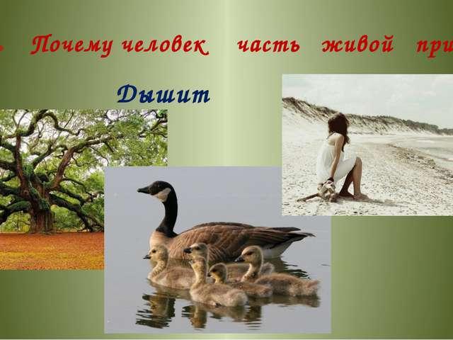 Почему человек часть живой природы? Дышит