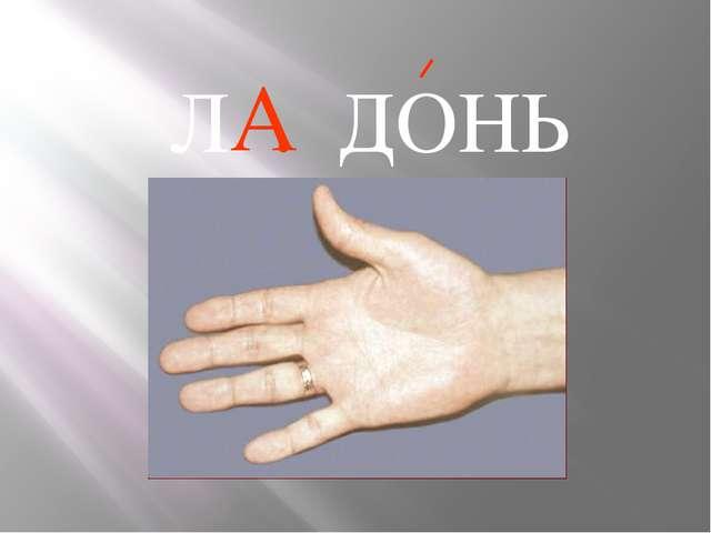 А Л . ДОНЬ