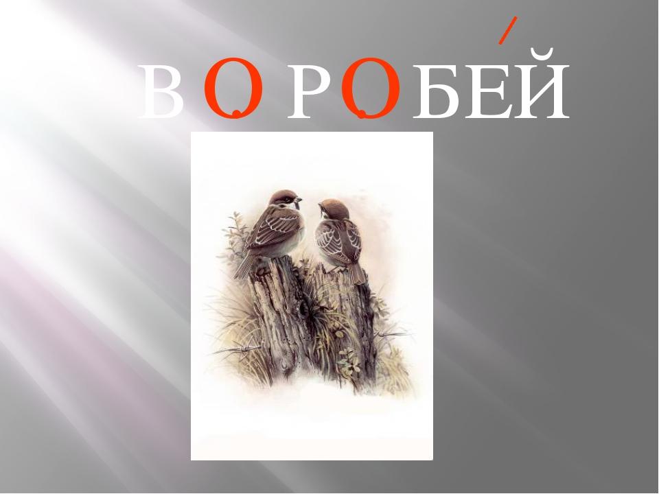 В . Р . БЕЙ О О