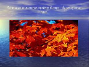 Если осенью листопад пройдет быстро – будет суровая зима.