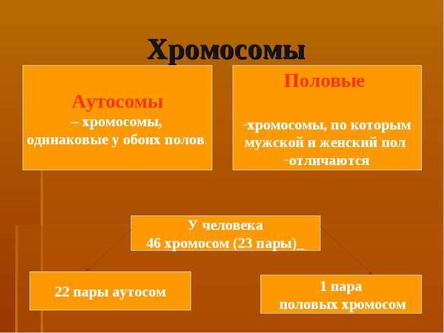 Хромосомы Аутосомы – хромосомы, одинаковые у обоих полов. Половые хромосомы,...
