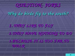 QUESTION- JOKES Why do birds fly to the south? 1. THEY LIKE TO FLY 2.THEY HAV