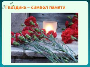 Гвоздика – символ памяти Антонина Сергеевна Матвиенко