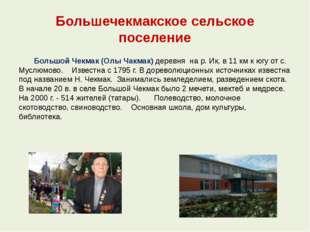 Большечекмакское сельское поселение Большой Чекмак (Олы Чакмак) деревня на р.