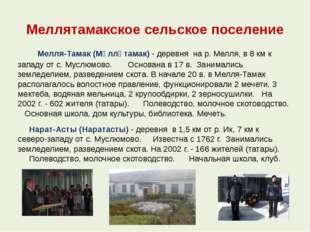 Меллятамакское сельское поселение  Мелля-Тамак (Мәлләтамак) - деревня на р.