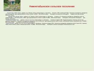 Нижнетабынское сельское поселение  Нижний Табын (Тубән Табын) - деревня