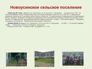 Новоусинское сельское поселение  Новые Усы (Яңа Усы) - деревня на р. Казанч