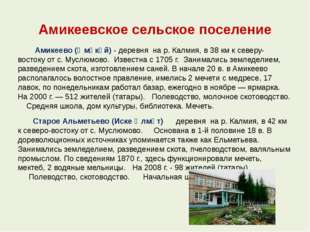 Амикеевское сельское поселение Амикеево (Әмәкәй) - деревня на р. Калмия, в 38