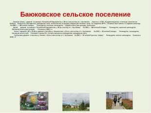 Баюковское сельское поселение  Баюково (Баек) – деревня на границе с Рес