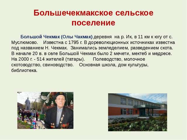 Большечекмакское сельское поселение Большой Чекмак (Олы Чакмак) деревня на р....
