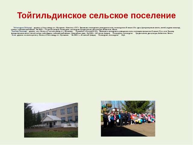 Тойгильдинское сельское поселение Тойгильдино (Тойгелде) -деревня в 14 км к...