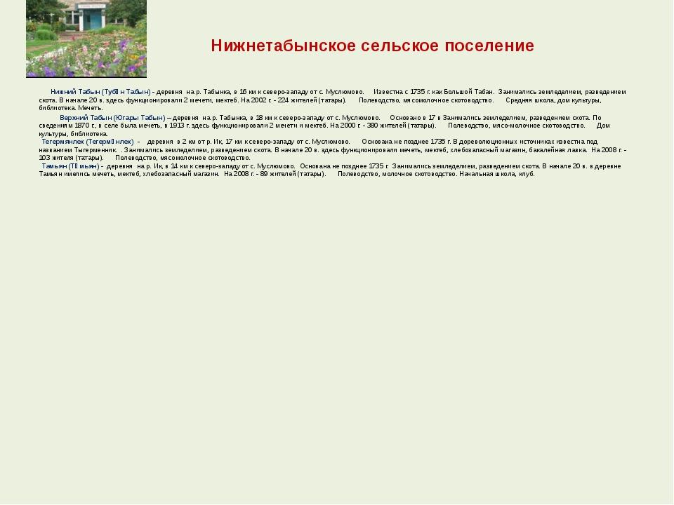 Нижнетабынское сельское поселение  Нижний Табын (Тубән Табын) - деревня...