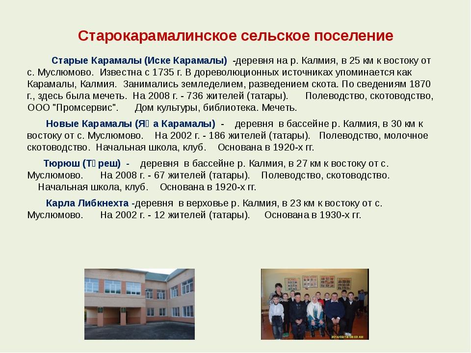Старокарамалинское сельское поселение Старые Карамалы (Иске Карамалы) -дерев...