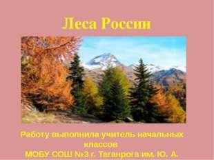 Леса России Работу выполнила учитель начальных классов МОБУ СОШ №3 г. Таганро