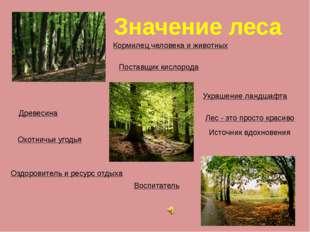 Значение леса Кормилец человека и животных Древесина Охотничьи угодья Поставщ
