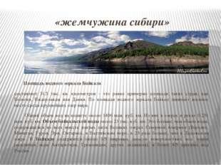 «жемчужина сибири» Площадь водного зеркала Байкала составляет 31.5 тыс. кв. к