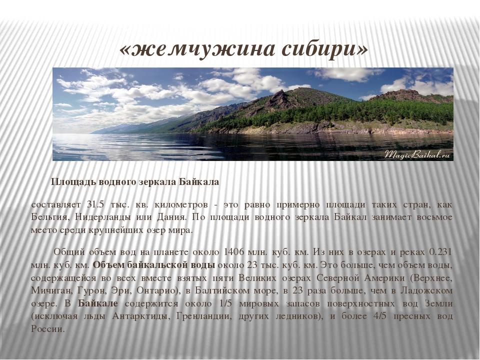 «жемчужина сибири» Площадь водного зеркала Байкала составляет 31.5 тыс. кв. к...