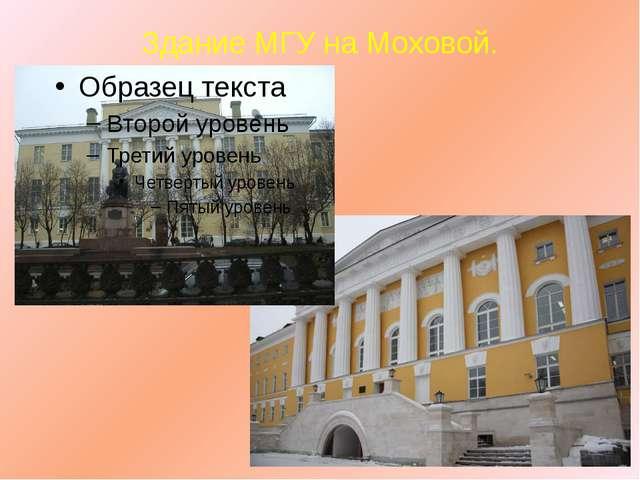 Здание МГУ на Моховой.