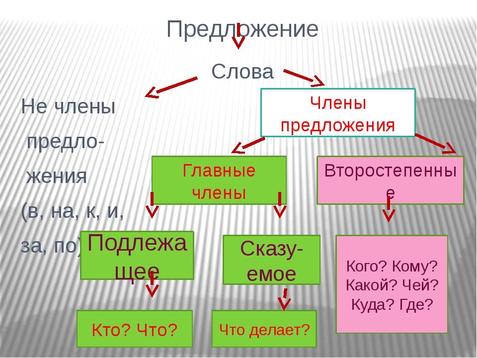 Предложение Слова Не члены предло- жения (в, на, к, и, за, по) Главные члены...
