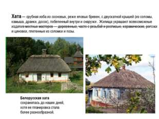 Хата — срубная изба из сосновых, реже еловых бревен, с двускатной крышей (из