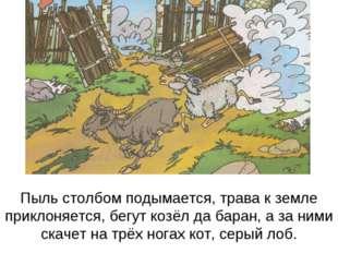 Пыль столбом подымается, трава к земле приклоняется, бегут козёл да баран, а