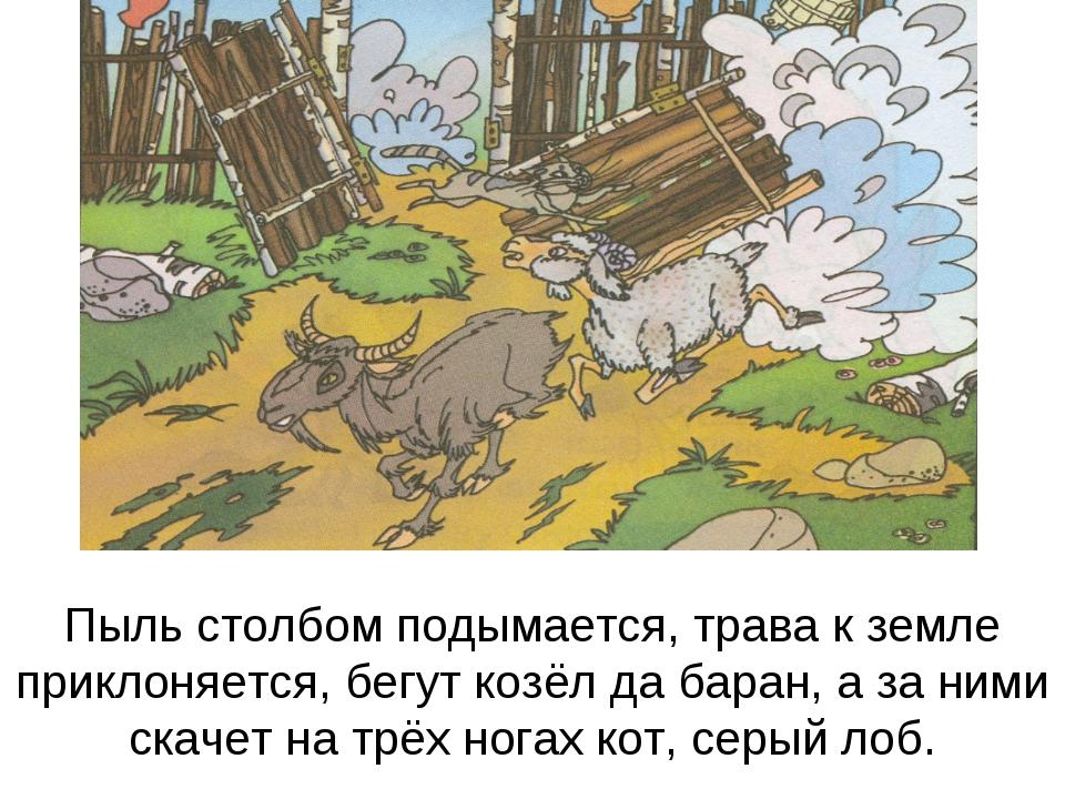 Пыль столбом подымается, трава к земле приклоняется, бегут козёл да баран, а...