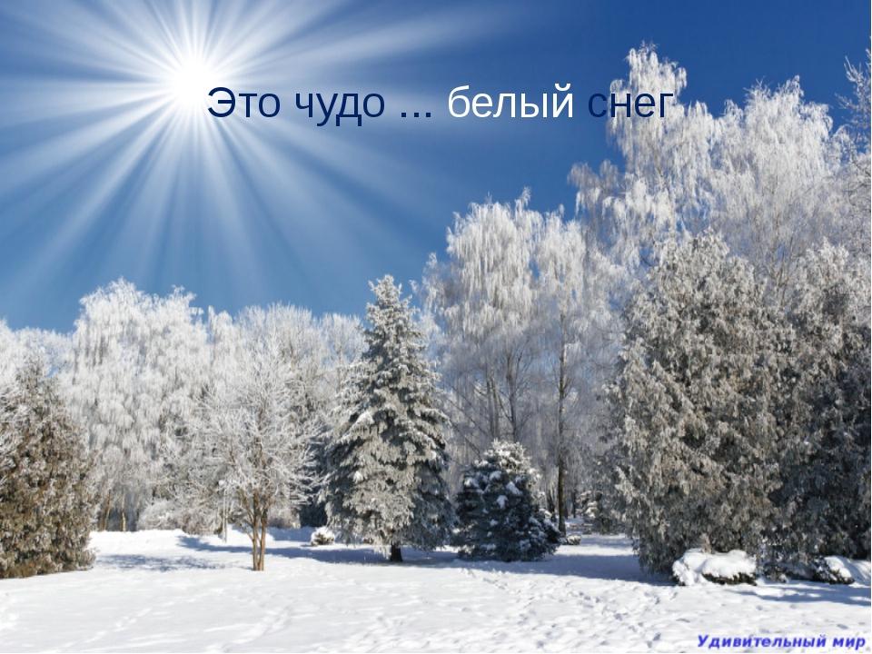 Это чудо ... белый снег