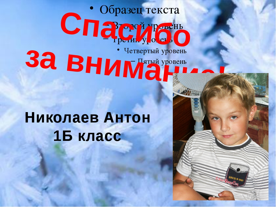 Спасибо за внимание! Николаев Антон 1Б класс