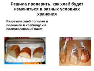 Решила проверить, как хлеб будет изменяться в разных условиях хранения Разрез