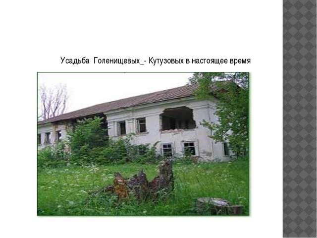 Усадьба Голенищевых_- Кутузовых в настоящее время